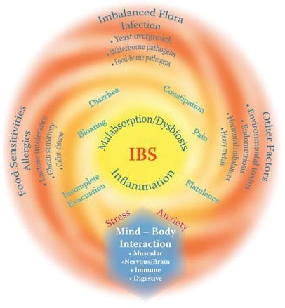 irritable bowel syndrome:homeopathic treatment for irritable bowel, Human body